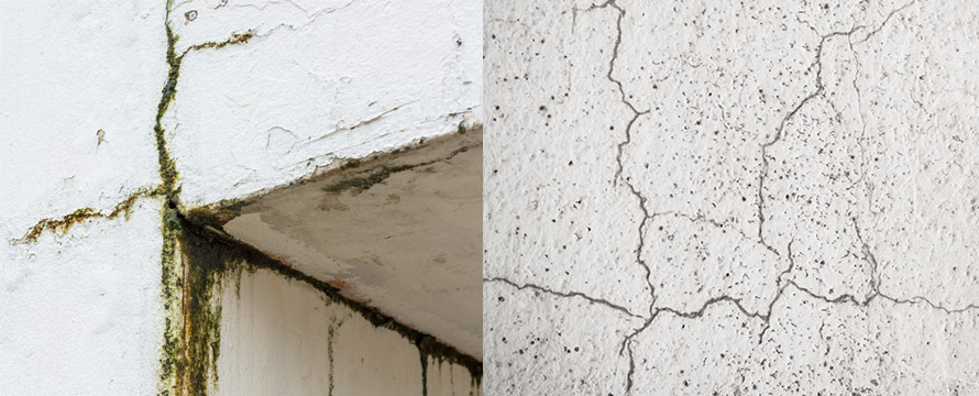 Fixing Cracks & Leaks