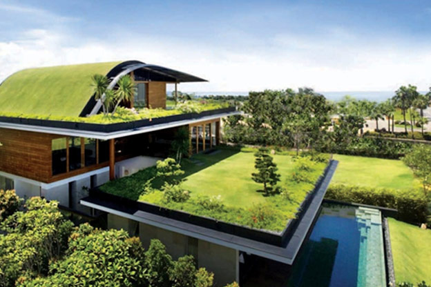 Survival of earth through green buildings